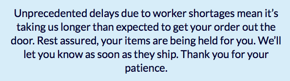 E-Commerce Order Delays Due to Worker Shortages